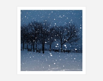 SNOWY NIGHT - Archival Photographic Square Print - Winter Scene in Nature on Metallic High Gloss Paper