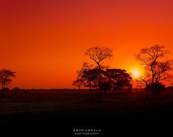 Sunset - Pantanal - Brazil