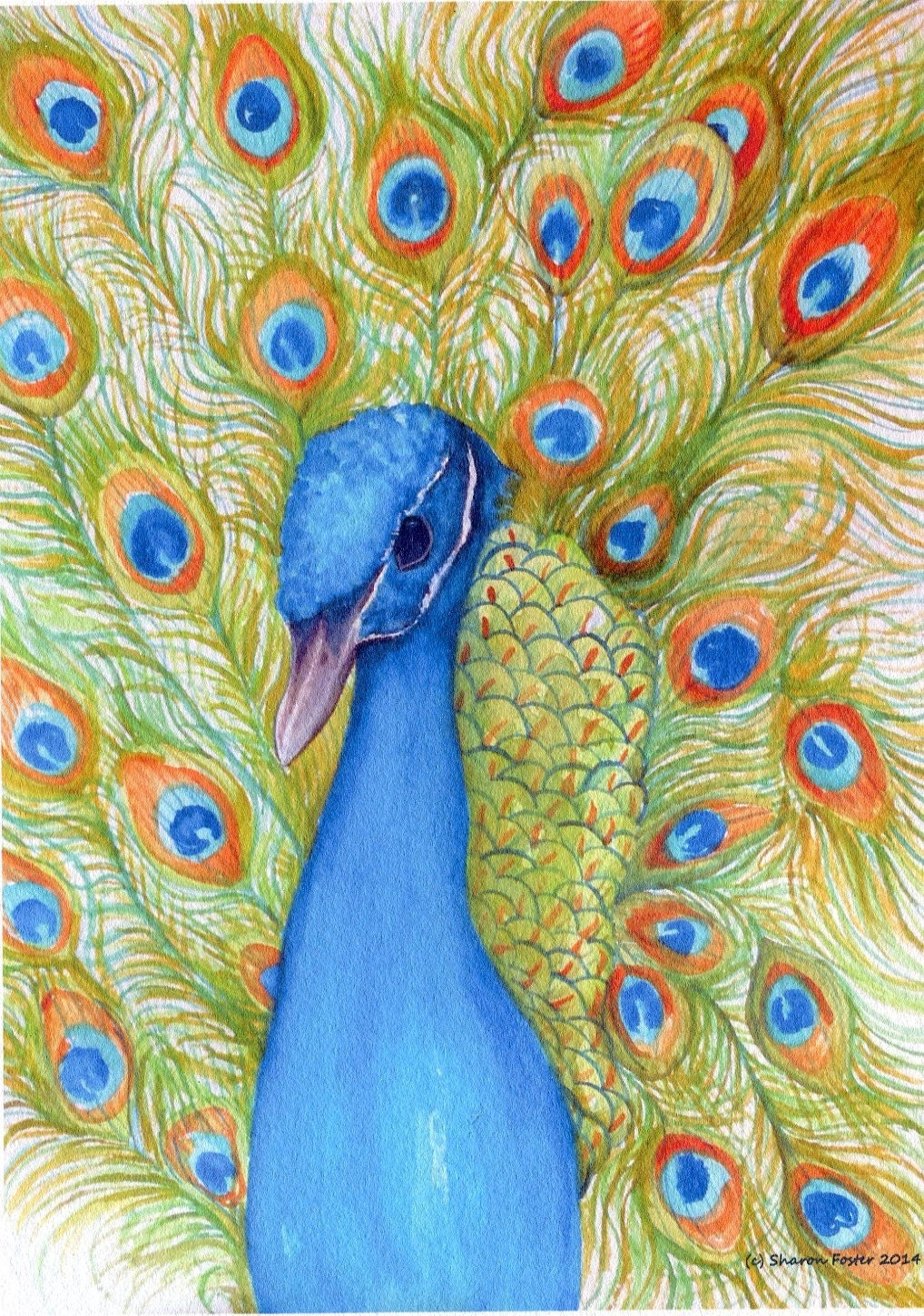 Peacock Print from my original painting watercolor Bird