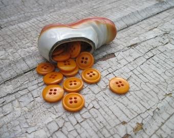 buttons bright orange pumpkin set of 25