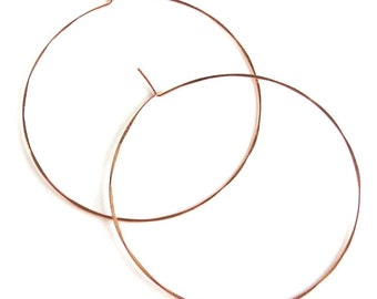 Birdhouse Jewelry - Pink Gold, Silver, or Gold Hammered Hoops