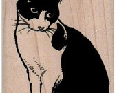 Cat  rubber stamp, sitting stamping black and white  art and craft supplies   number8354