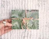 postcard set : ferns and lupins