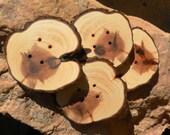 2 extra large Juniper Wooden buttons- handmade  big buttons 3 inch four holes 3003