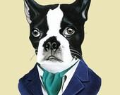 Boston Terrier Dog art print by Ryan Berkley - Three sizes