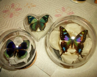 Three Butterfly Holiday Ornament Set
