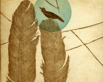 etching, bird art print, feather art print, feather wall art, bird art, modern art print, blue dot, turquoise dot, feathers, sepia brown