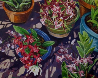 An original painting of orchids in several pots