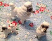 Vintage Japan set miniature poodles