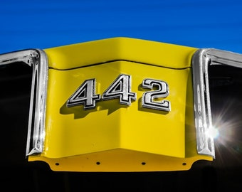 1970 Oldsmobile 442 Logo Car Photography, Automotive, Auto Dealer, Classic, Muscle, Sports Car, Mechanic, Boys Room, Garage, Dealership Art