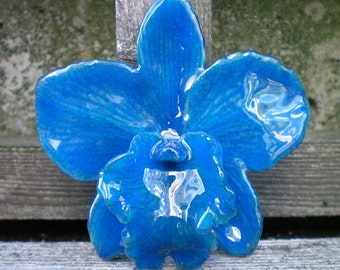 Free Shipping REAL Natural True Teal Blue ORCHID in Poly Resin Pin and Pendant