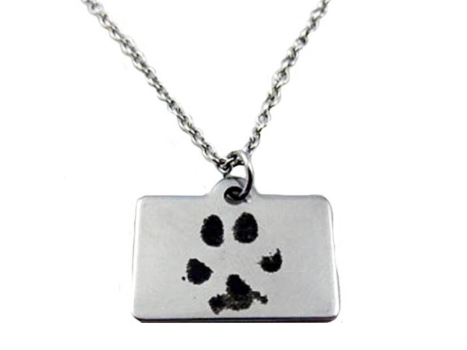 custom paw print necklace with your pet s by laurennicolegifts