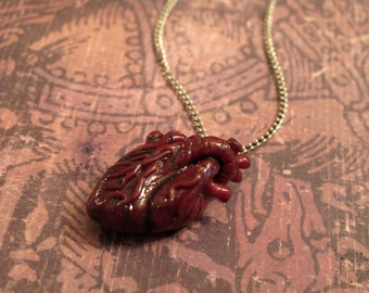 Polymer Clay Anatomic Heart. Jewelry Charm Necklace Miniature Polymer Clay Key Chain My Heart Beats For You Blythe Pull Chain Charm Anatomy