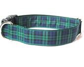 Black Watch Tartan Large Dog Collar