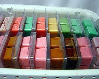Soy wax melt-soy melt-soy tart-triple scented-clamshell.  Green Tea & Cucumber.  Made by Nana J's Handmades