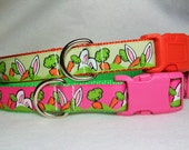 Easter Bunny Ears Dog Collar, In M, L, XL Side Release Buckle