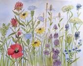 Art Wildflower Garden Illustration Nature Watercolor Original Painting Mixed Media