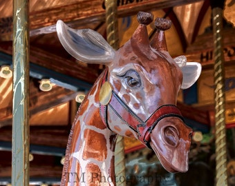 Carousel - Giraffe - Carnival Ride - Merry Go Round - Circus - Carnival - Animal Rides - Fine Art Photography