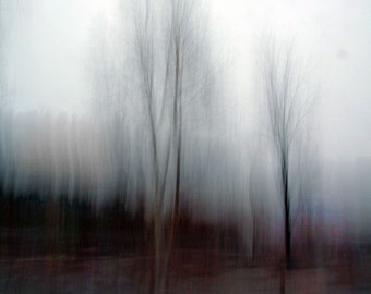 """Abstract landscape photography grey forest dreamy bare branches surreal nature dark blur  - """"Shadows"""" 8 x 10"""