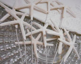 Beach Wedding Cake Topper - Wired Starfish - Cake Picks - Wedding Cake Decor - 3 to 3.5 inch Starfish