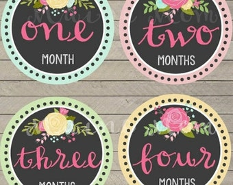READY To Ship Baby Girl Monthly Stickers Baby Month Stickers Roses Floral Chalkboard Milestone Stickers, Bodysuit Gift