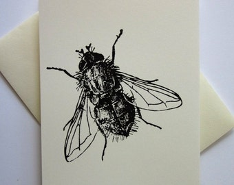 Fly Insect Bug Note Cards Set of 10 with Matching Envelopes