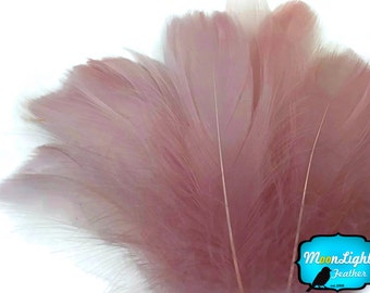 Coquille Feathers, 1 Pack - TAUPE Goose Coquille Loose Feathers - 0.35 oz. : 3774