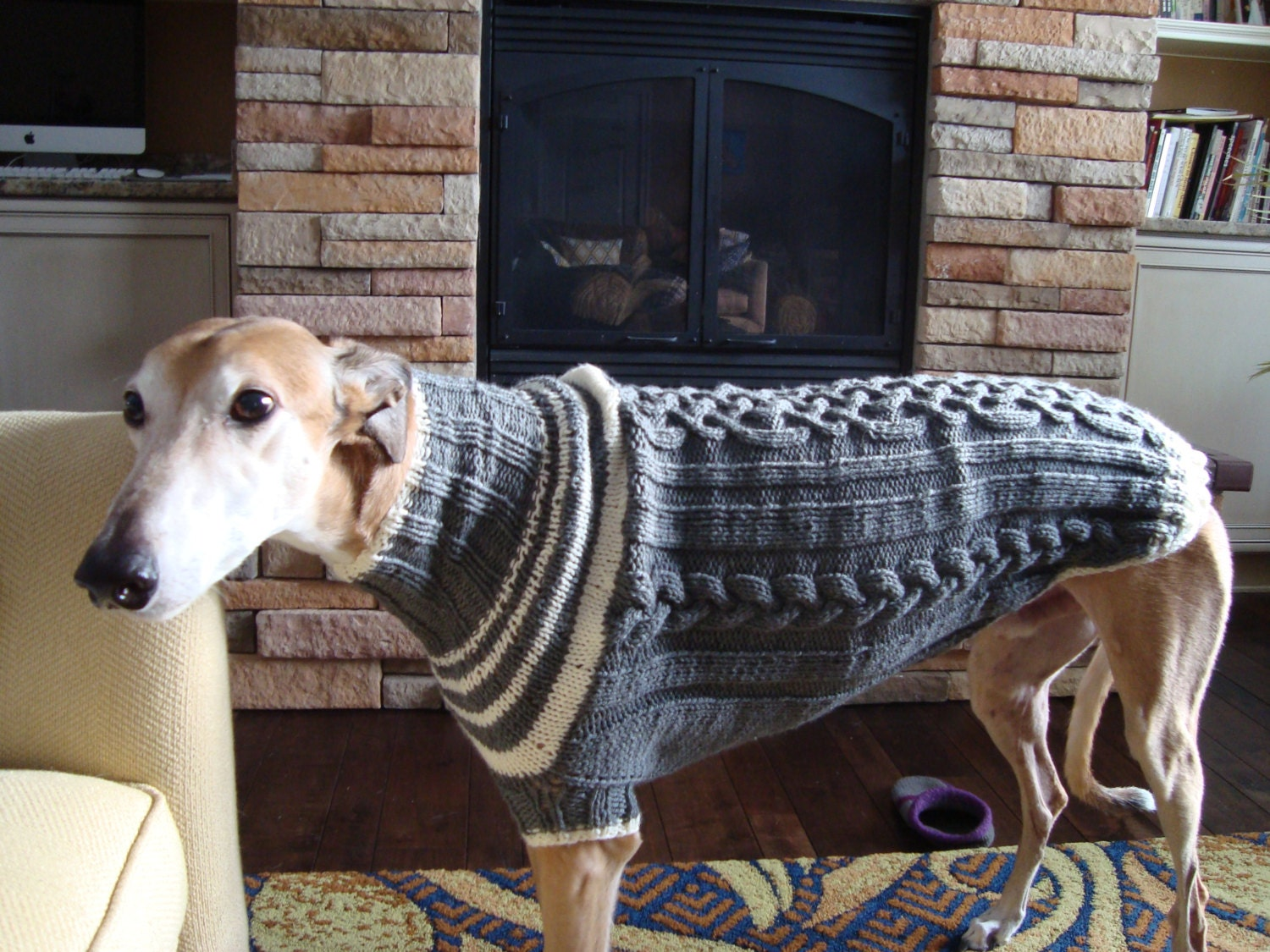 dog/ greyhound sweater knitting pattern PDF file ONLY