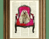 The Princess Maltese sits upon her throne pink dog illustration beautifully upcycled dictionary page book art print