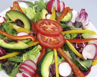 Recipe Ebook Salads and Dressings Nutritious Over 250 Salad recipes Bountifully Delicious