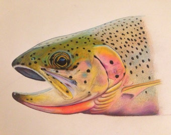 FULL size 11×17 Cutthroat Trout Limited Edition Print
