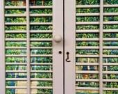 Window Art Vintage Wooden Louver Shutter 2 Panel  Wall Art - Gustav Klimt Forester's House in Weissenbach - Decoupage