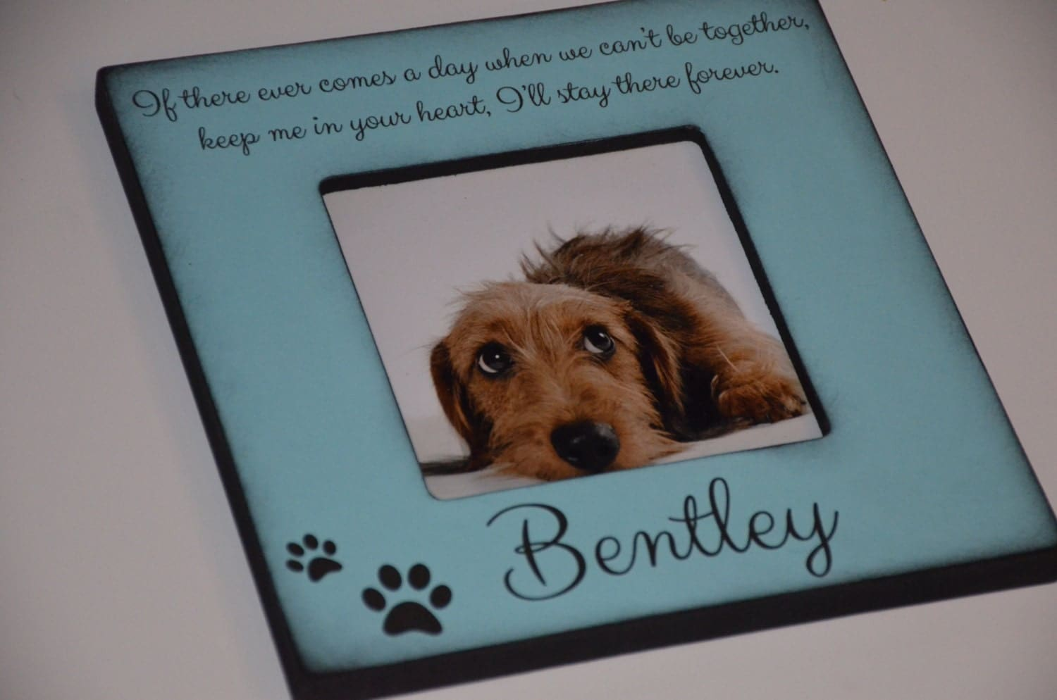 personalized dog frame personalized cat frame custom pet frame memorial dog frame we love our pet frame