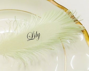 mint green Feather place cards | made by hand of iridescent mint green paper, Name Printing Included