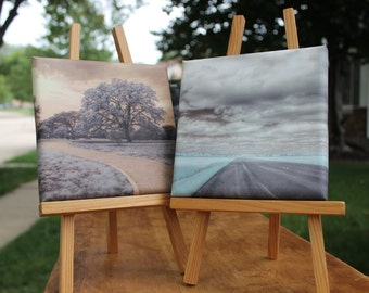 Two Infrared Landscape photographs on canvas.   Open Road and The Path.  Signed by artist.   Fine art photography.  Home Decor.  Feng Shui.