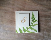 Fern Table Number Tents - for Events, Weddings, Parties, Showers, Graduations.
