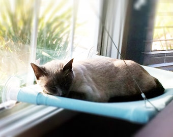 Solid Blue, Green - Curious Cats Window Perch