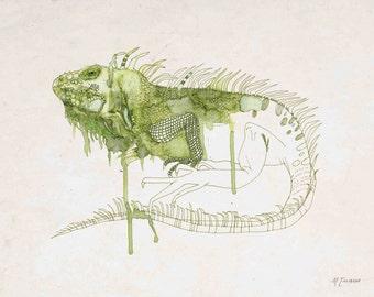 "Modern Iguana Art Print 8""x10"", 5""x7"", 9""x12"" or 11""x14"""