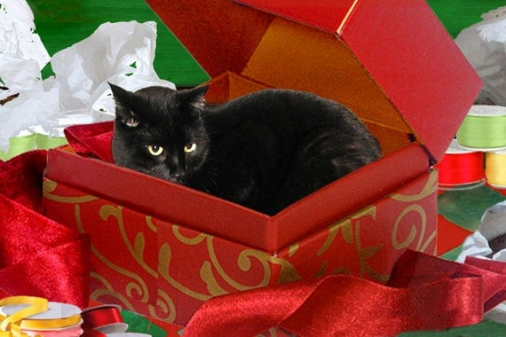 Black Cat Christmas Card, Handmade, Cat in a Box, Holiday Greeting Cards, Whimsical Art, Deborah Julian