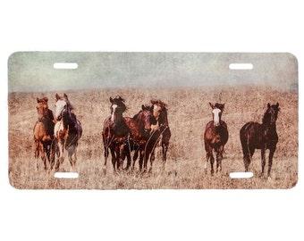 license plate, Horse art, horses,  Southwestern, yearlings, horse lover gift, Christmas gift, Arizona car license, horse license, horse gift