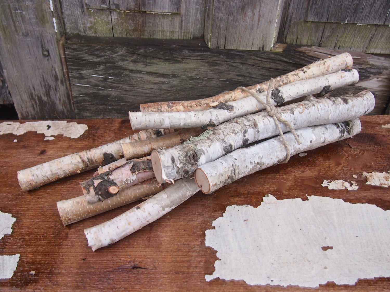 Birch wood bundle white branches and twigs diy