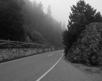 Mackinac Island Road, Black and White, Bike trail, fog, foggy, Evergreen