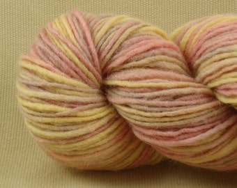 Hand Dyed Yarn - Multicolor Madness - Worsted Weight Yarn - 100% Wool Yarn