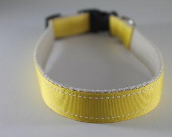 Hemp dog collar - Yellow Saddlestitch