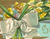 Easter Postcard ~ Large White Bow Yellow Spring Daffodils and Chicks with Forget-me-Nots on Vintage Postcard HSV Litho 1910
