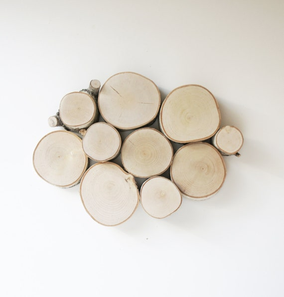 sale - natural white birch forest topography wall sculpture - wood slices, wood wall decor, modern rustic art, tree branch wall hanging
