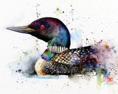 LOON Watercolor Print by Dean Crouser