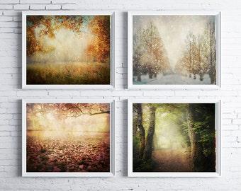 Turn! Turn! Turn! - FOUR PHOTO SET, four seasons art, photography gift set, nature photography, tree photography, four seasons photography