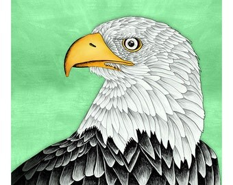 DIGITAL Eagle illustration-Bald Eagle-instant download from original pencil, watercolor and acryllic illustration