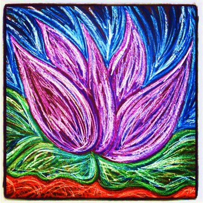 lotusblossomalbums